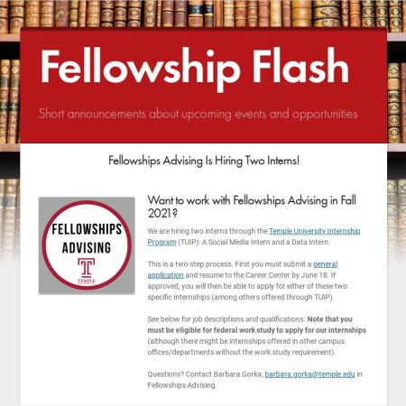 Fellowship Internship-1